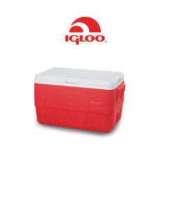 Ψυγείο Igloo Family 36