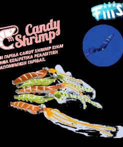 Candy Shrimp Fiiish